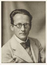 Erwin Schrodinger who proposed Wave Equation